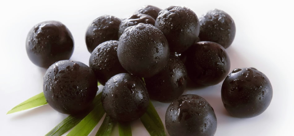 Amazing Acai Berry Benefits for Better Health